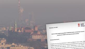 """""""Mało na ponad 10 miesięcy"""". Polski Alarm Smogowy krytycznie o pracach rządu"""